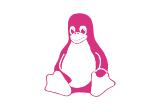 Asesoría y Consultoría en Linux